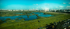 Lacul Vacaresti (Bucuresti) (Catalin_Pop) Tags: city blue sky urban panorama lake verde green lac romania bucharest bucuresti bukarest roumanie oras rumanien mlastina vacaresti capitala panoramafotográfico