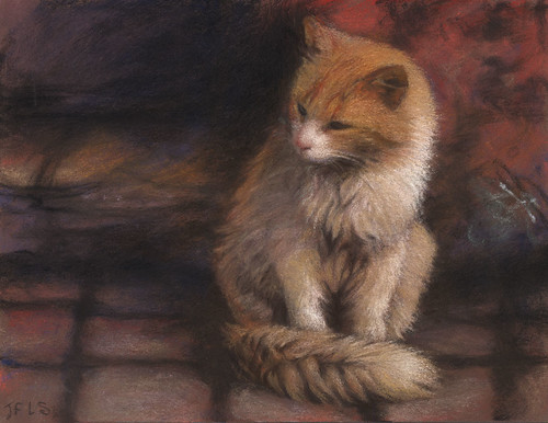 "Pastel 626 ""Chat de Marrakech"""