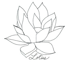 "Lotus Blossom • <a style=""font-size:0.8em;"" href=""https://www.flickr.com/photos/78624443@N00/549775317/"" target=""_blank"">View on Flickr</a>"