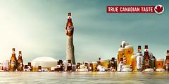 molson, jean julien guyot, ipub, blog, pub, infopub.blogspot.com, ipub.ca.cx, canadian beer