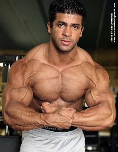 Male muscle hunks