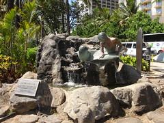 Waikiki Surf Dude