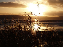 sunset on Thurstaton beach (mcloud1) Tags: autumn sunset beach merseyside thurstatonbeach