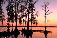 Sunset at Cypress Gardens, Florida (Jeff Wignall) Tags: sunset scenery florida nikond70 cypress cypressgardens organge wignall oldflorida