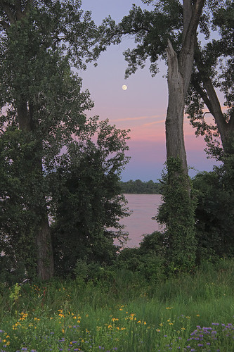 Moon rising over the Mississippi River, at Cliff Cave Park, in Oakville, Missouri, USA