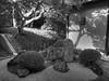 Kamakura in Early Autumn-1070034_tonemapped (Gideon Davidson) Tags: kamakura hdr japanhdr