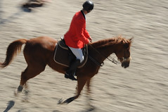 Ridin' slow (alexcubata) Tags: show horse caballo jumping nikon ride riding bulgaria jockey jumper nikkor hoof rider equestrian saddle equine mane caballero manege slowmotion horsejumping showjumping hoofs slowshutterspeed   horsemane d90 krum horsejump  lekarski    nikond90 bojurishte bozhurishte jumpershow       lekarsky   90             showjumpingrider      alexcubata