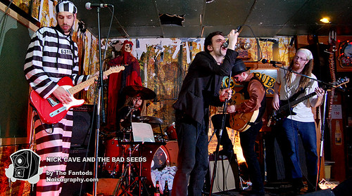 The Fantods as Nick Cave and the Bad Seeds 01