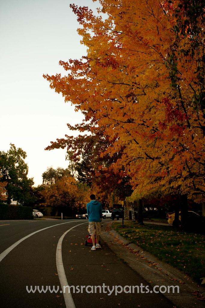 Fall Color 2010-6.jpg