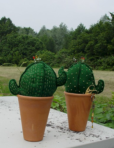 Kaktus-O-01