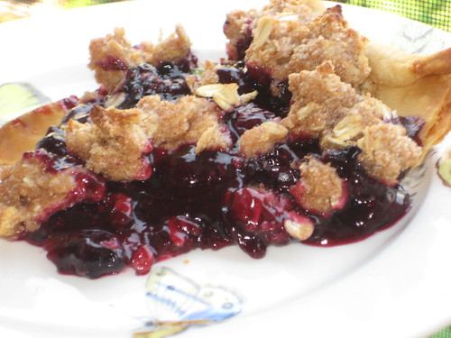 Blueberry Pie with Crumble topping.