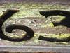 sixty-three (ybonesy) Tags: newmexico corrales albuquerquewomensflickrmeet