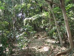 山登り 1