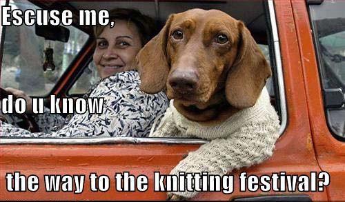 knittingfestival