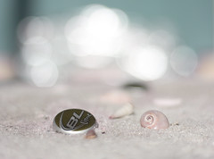 happy worms eye view sunday ~ beach bokeh edition (Cottage 960) Tags: bokeh explored wevs beachbokeh wormseyeviewsunday hopemichelhassomuchtequilasheforgetsitssunday
