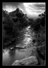 Zion Virgin River (Tyler Huston) Tags: sky blackandwhite nature water monochrome clouds landscape utah zion zionnationalpark virginriver