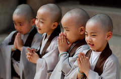In their Expressions (Derekwin) Tags: seoul korea korean monk buddhism buddha lotuslanternfestival lotus festival panasonic panasonicgf1 canon50mmf14fd canon 50mm fd f14 gf1 m43 little monks shaved robes smile happy pray praying grey brown jogeysa temple buddhasbirthday child children jogyesa panasonicdmcgf1 lumix panasoniclumixdmcgf1 topf200 topf250