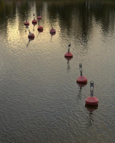 bojar, buoys