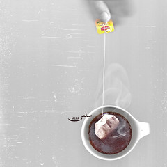scannography project [1/6] (Salma Alzaid ) Tags: bw texture cup project poetry tea drink scratches scan scanning teabag quotation lipton scanography prose salmaphotography salmaz  scannographyscanscanning
