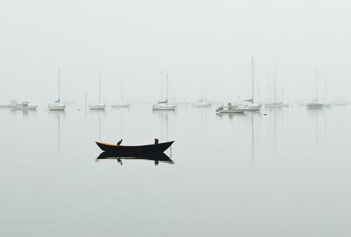 Sentinels in fog
