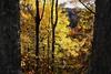 IMG_0914_IMG_0914 (Smoky Mountain Memories) Tags: autumn fall northcarolina blueridgeparkway smokymountains 5star greatsmokymountainsnationalpark