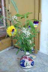 Le bouquet de ma petit-fille