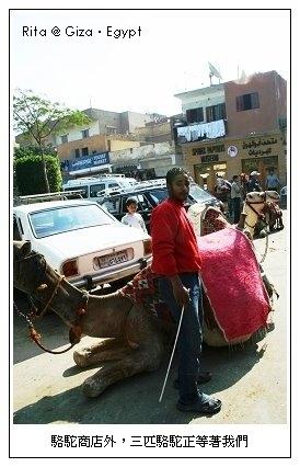 camel-pa