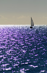 tinselsea (petervanallen) Tags: ocean morning sea boat sailing sparkle sail dinghy nofilter