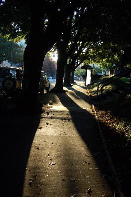 0907_sidewalk_sun_426x640