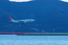 長崎空港に着陸するJALのA300-600R