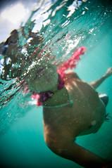 (Micah Camara) Tags: ocean flowers blue portrait water hawaii underwater
