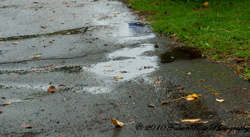 10-25-2010_puddles_rain_wm