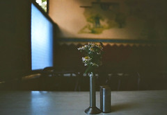 (ClaWeD One) Tags: flowers blue film window analog 35mm dark table sadness restaurant nikon dof darkness kodak bokeh 28mm bangalore memories grain wideangle ishootfilm nostalgia dreamy gloom grainy melancholy nikonfm2 emptiness fm2 filmgrain bluewindow clawed kodakfilm melancholia flowerstand fm2n 28mm28 28mmf28 nikon28mmf28 seriese indiranagar colorplus kodakcolorplus clawedone