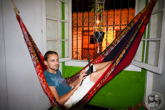 Boris Chilling In A Hammock At Casa Café