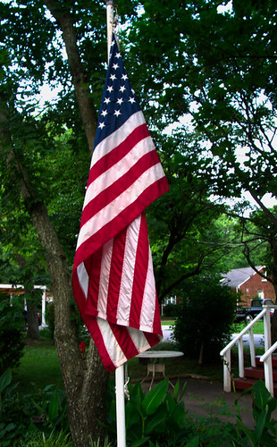 Domestic Old Glory