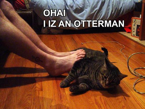 OHAI, I IZ AN OTTERMAN