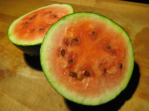 our one watermelon!