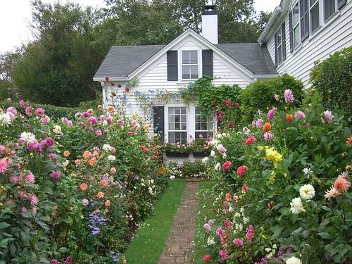 Emily Post's Garden