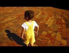 Follow the Yellow Brick Road (JFabra) Tags: madrid espaa brick canon spain psedited canoneos400d sigma18200os colourartaward jfabra psfilterbordesaadidos