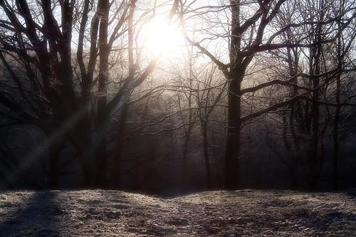 Solen går upp