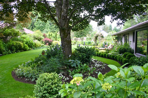 Woodley Garden - view across the yard