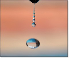 Pode ser a gota d'água................. **** EXPLORE **** (Marina Linhares) Tags: nature water água drops natureza drop gotas gota flickraward showroomsbest