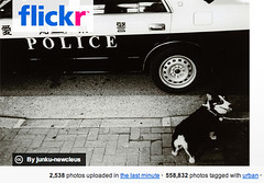 flickr POLICE (nels1) Tags: nocensorship censor flickrpolice suckr flickrcensorship