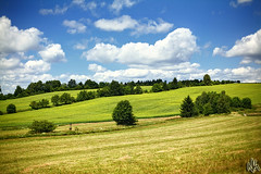 Czech Landscape (i ea sars) Tags: blue trees summer sky naturaleza sun sunlight tree nature field clouds forest canon landscape 50mm countryside interestingness interesting scenery perfect europa europe heaven paradise skies republic arboles czech earth hill natur dream surreal sunny bluesky scene tschechien hills explore land fields czechrepublic 5d canon5d wald priroda hilly ceskarepublika moravia morava evropa canon50mm tsjechi canonef50mmf14usm   stromy proda vysoina canoneos5d repubblicaceca cesko  eskrepublika vysocina superaplus aplusphoto platinumheartaward  larpubliquetchque csehkztrsasg