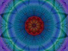 Lotus Blossom - by Lynn (Gracie