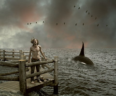 Survivors (Mattijn) Tags: sea birds cat pier photomontage orca pino mattijn survivors bunschoten