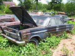 1965 Mercury Comet Caliente (forwardlookguy) Tags: auto cars car automobile mercury junkyard oldcar comet salvage caliente 1965 salvageyard