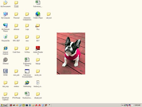woman_desktop