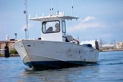 Many boats are helping in the cleanup effort (Kris Krug) Tags: ted gulfofmexico slick gulf pollution oil environment bp spill oilslick oilspill gulfcoast britishpetroleum tedx oilspew oilspillbp tedxoilspill