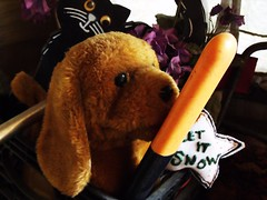 Doggie Lick The Stick (BACKYard Woods Explorer) Tags: stuffeddog stuffedanimals letitsnow doggie halloweencat bloggedontuppy